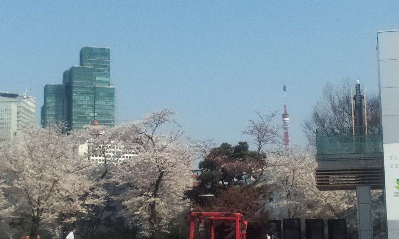 ミッドタウン桜2