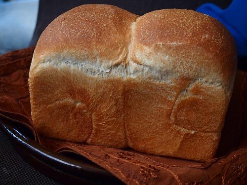 いちご食パン1の5