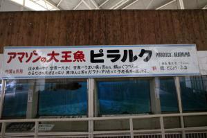 12_20120324130224.jpg