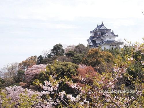 岡崎城(跡)