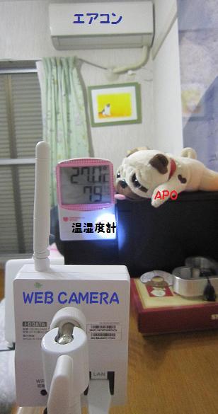 こんな感じ・・・(単純な構造(^_^;))