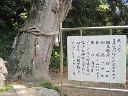 大興寺04