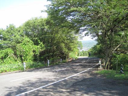 屋島ドライブウェイ08