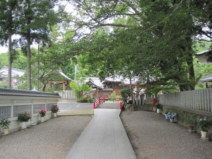 金泉寺02