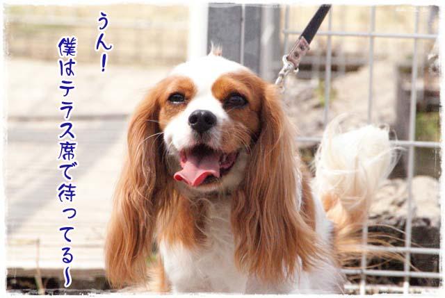 20110828_75.jpg