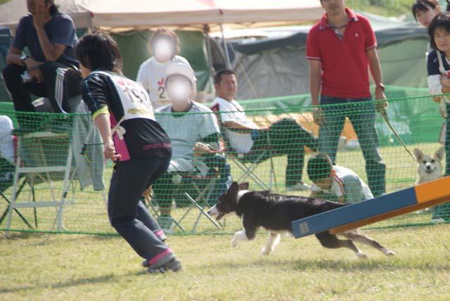 20111010_318.jpg