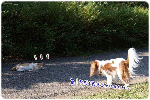 20111020_28.jpg