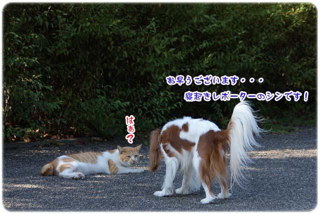 20111020_36.jpg