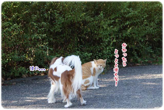 20111020_43.jpg