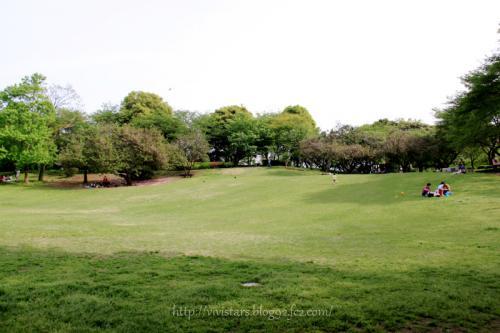 春の岩本山公園