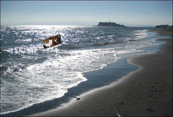七里ガ浜 033