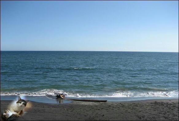 七里ガ浜 015