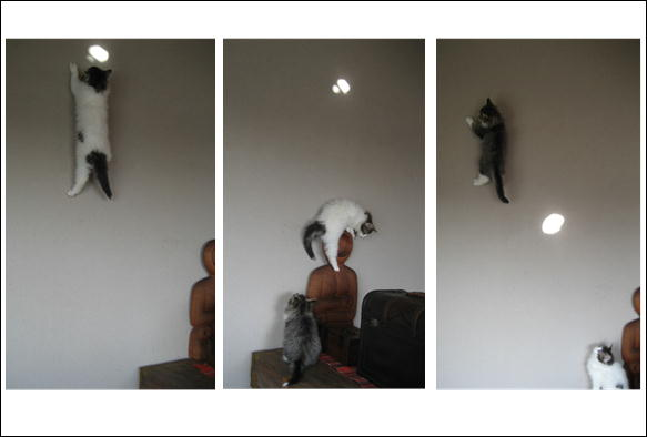 壁飛び 004