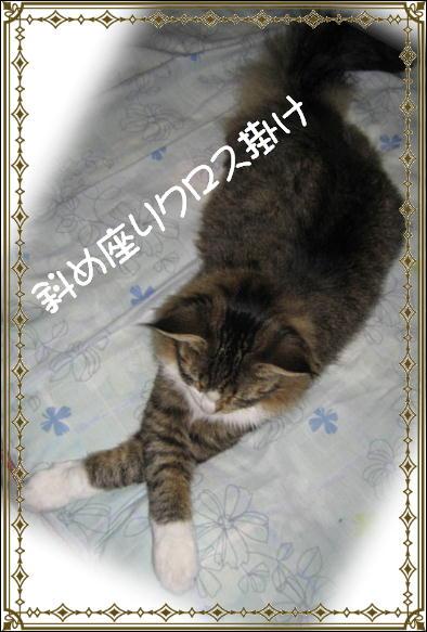 朝日 002