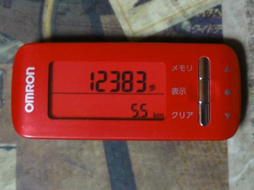 DSC00473_convert_20120403192304.jpg