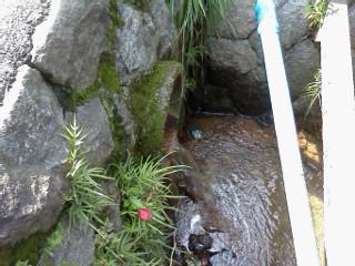 nogawashuuhenn-kaikyo-nagarekomi.jpg