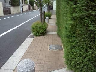 sakuragaoka-shiryuu8.jpg