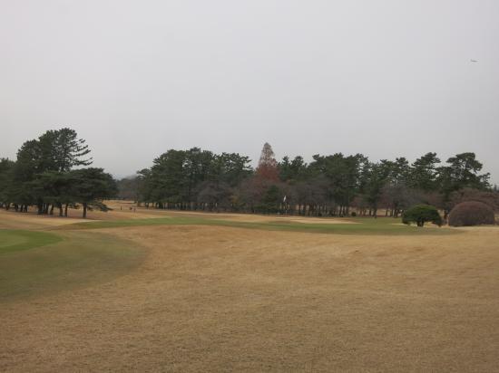 201312.18神奈川・東京1