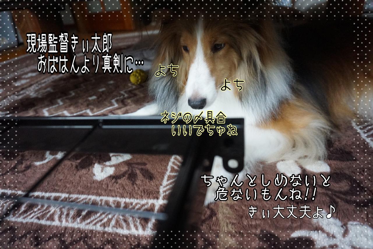 2014-09-25-20-11-26_deco.jpg