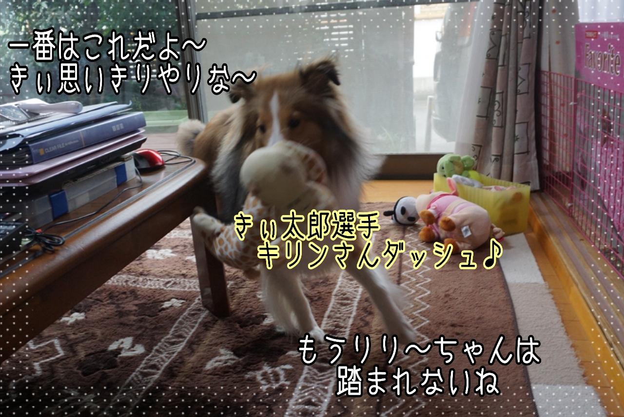 2014-09-25-20-41-11_deco.jpg
