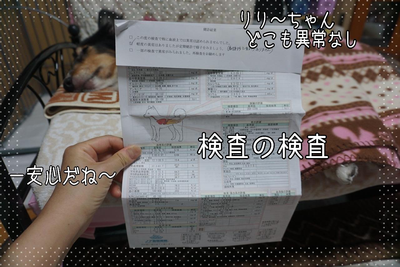 2014-09-25-21-14-45_deco.jpg