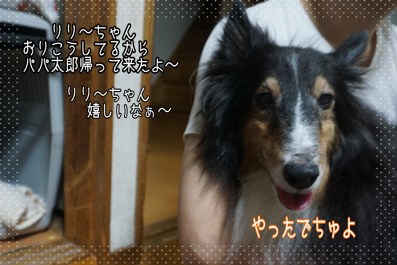 2014-09-25-21-29-28_deco.jpg