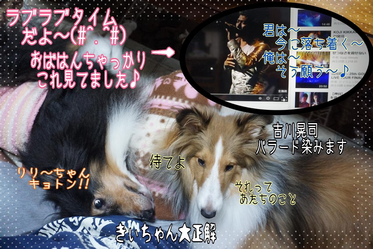 2014-10-03-13-19-52_deco.jpg
