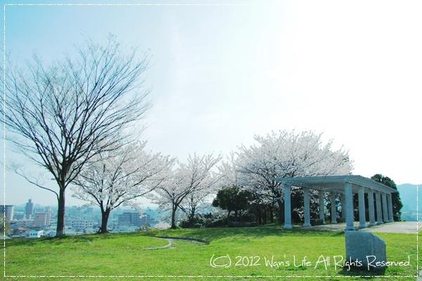 IMG_5430-20120412.jpg