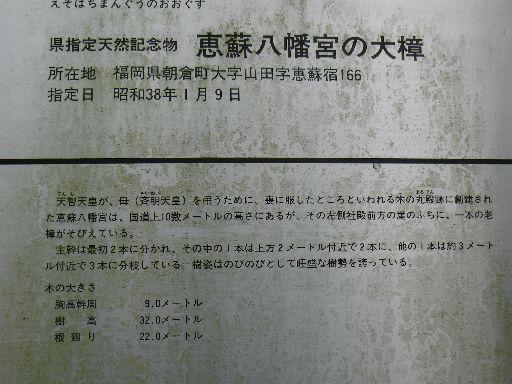 P1280332.jpg
