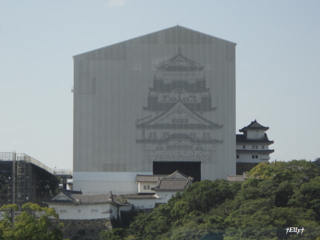 姫路城(改修中)1