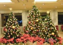 六甲山麓 里山便り ~ トカイナカ な里山で音楽と猫と犬とのスローライフ ~-クリスマスツリー09-1