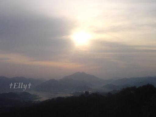 六甲山麓 里山便り ~ トカイナカな里山で音楽と猫と犬とのスローライフ ~-舞鶴の朝日