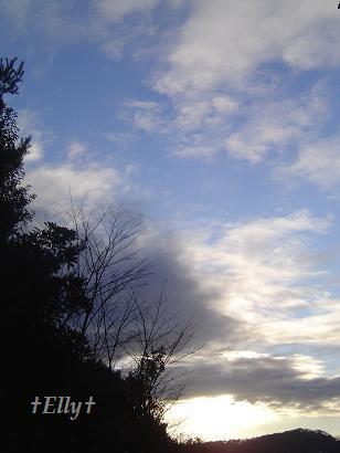 六甲山麓 里山便り ~ トカイナカな里山で音楽と猫と犬とのスローライフ ~-明けの空02