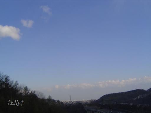 $六甲山麓 里山便り ~ トカイナカな里山で音楽と猫と犬とのスローライフ ~-大阪方面を望む
