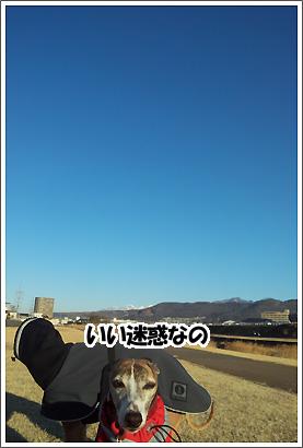 20130129_4.jpg