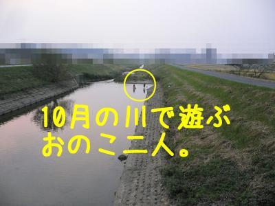 1_20111021120856.jpg