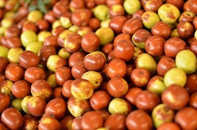 177めちゃめちゃ小さいりんごのような味の果物。