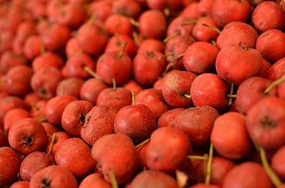 176みかんみたいな味のするりんごの形をした果物?