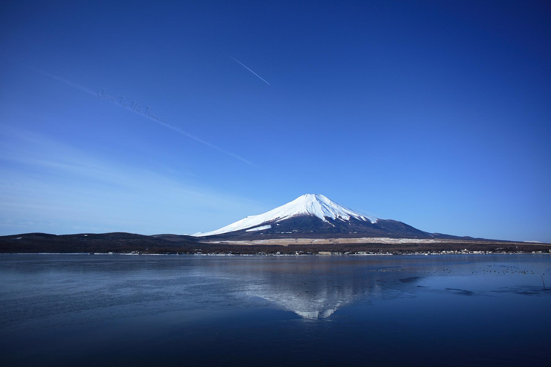 fuji13403.jpg