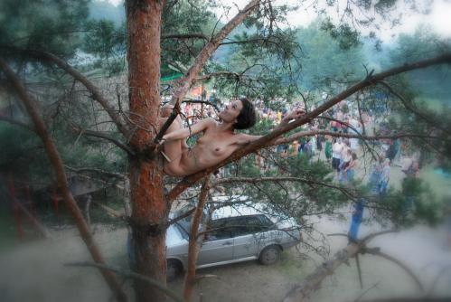 木に登るみたいですよ (4)