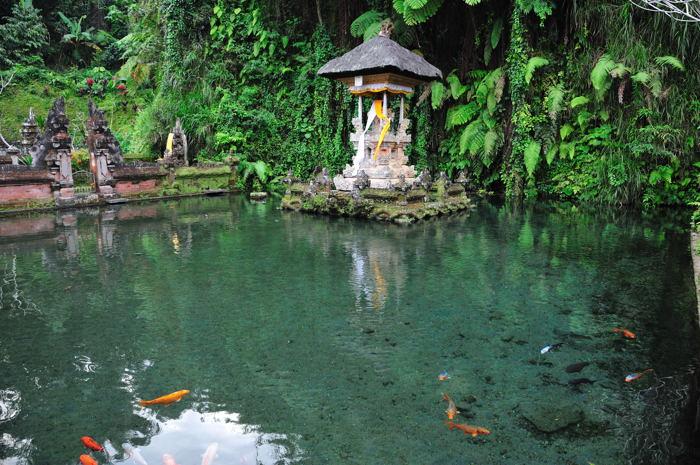 110917_Sebatu寺院(湧水)