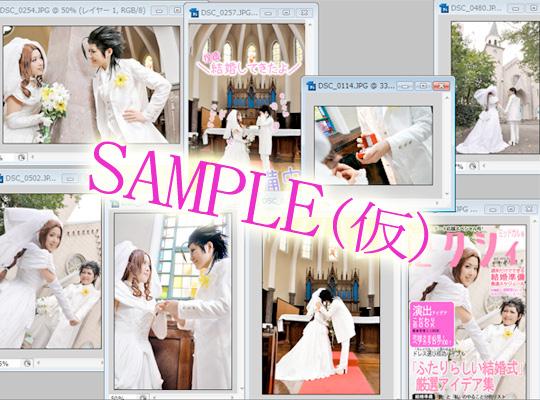 sample001_20111116023029.jpg
