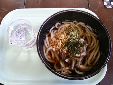 20131214_lunch.jpg
