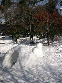 2014.2.9大雪の公園