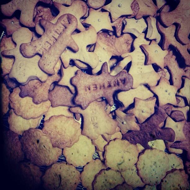 Anthemクッキー