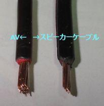 DSC01290.jpg