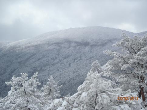 比婆山(毛無山~出雲峠) 027