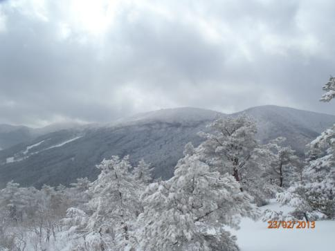比婆山(毛無山~出雲峠) 026