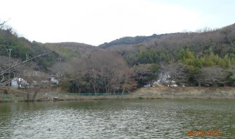 綾部山梅林 002-001