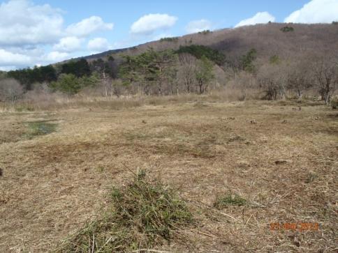千町原野焼き&霧ケ谷湿原保全・環境整備活動 093